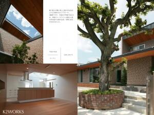 椎の木の家02